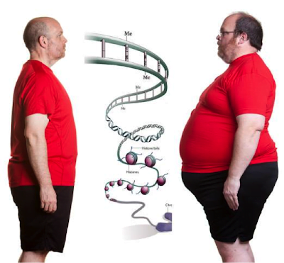 The obesity riddle: Your genes? , Your choices?, or Both?!